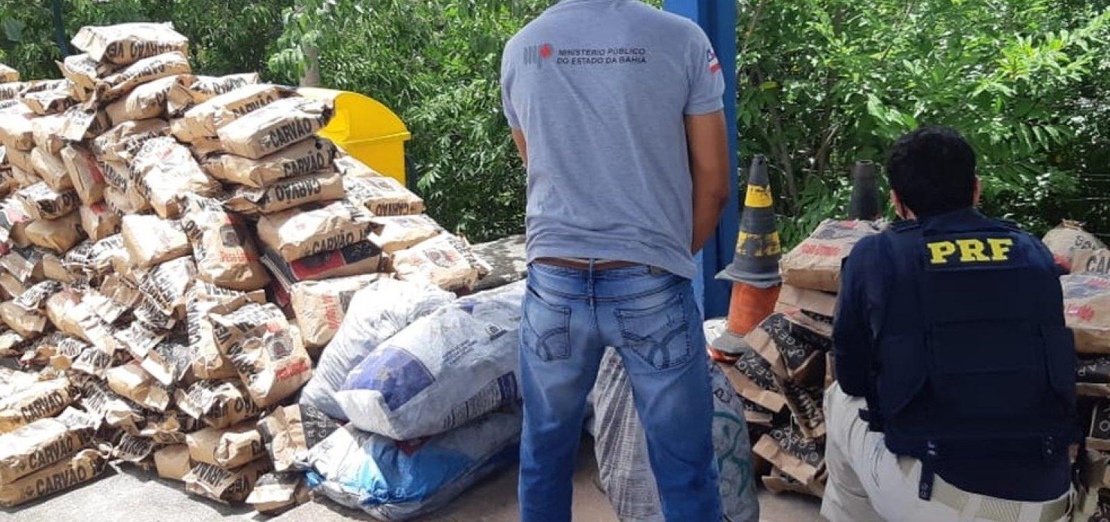 Pássaros silvestres e carvão vegetal irregular foram apreendidos em operação na região da Chapada Diamantina