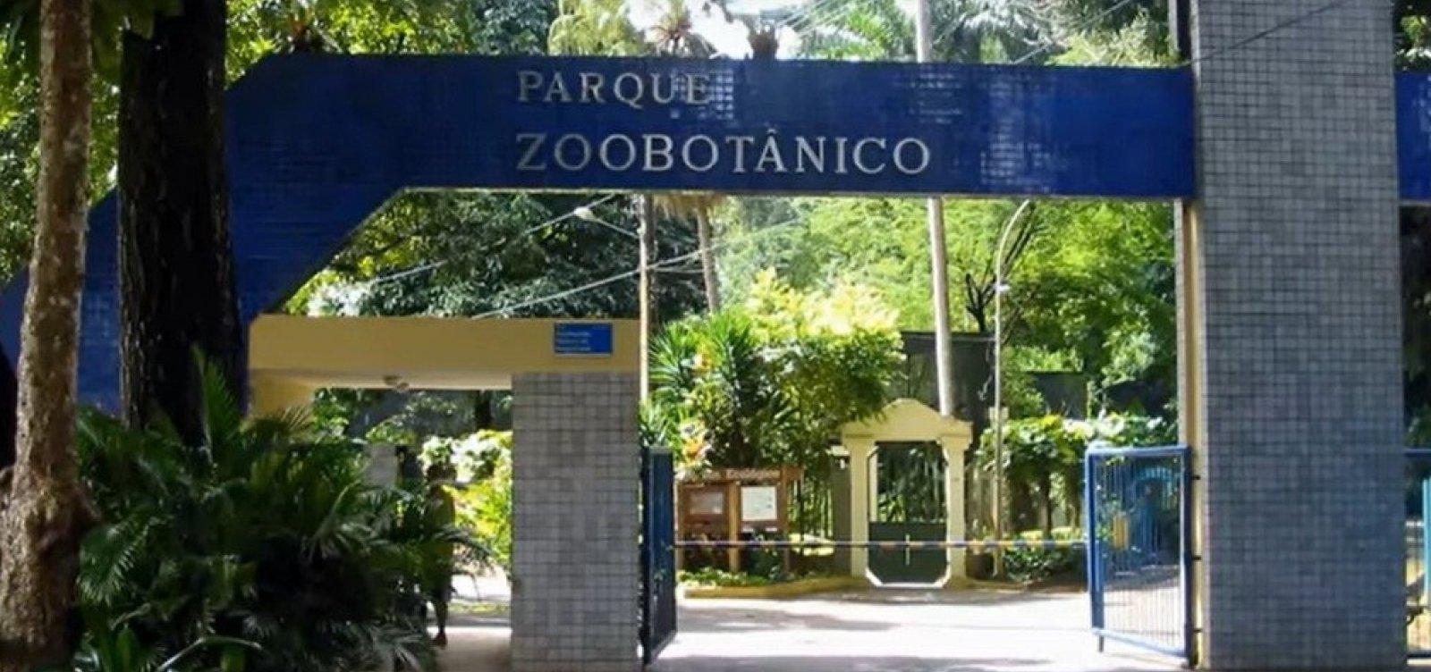 Ambulantes protestam por reabertura de Zoológico em Salvador