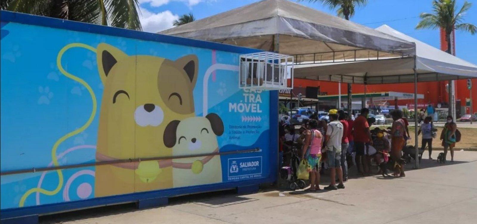 Castramóvel oferece vacina antirrábica gratuita em Salvador