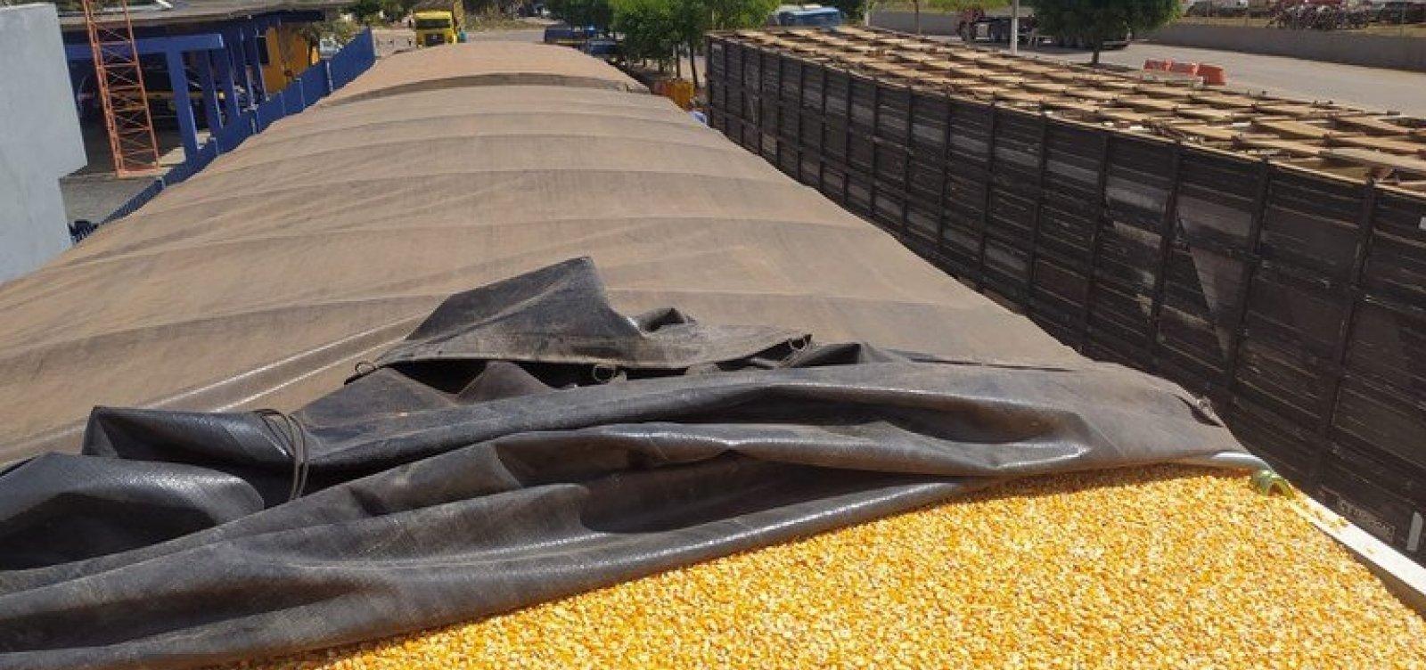 PRF flagra carreta carregada de milho com 25 toneladas acima do limite permitido