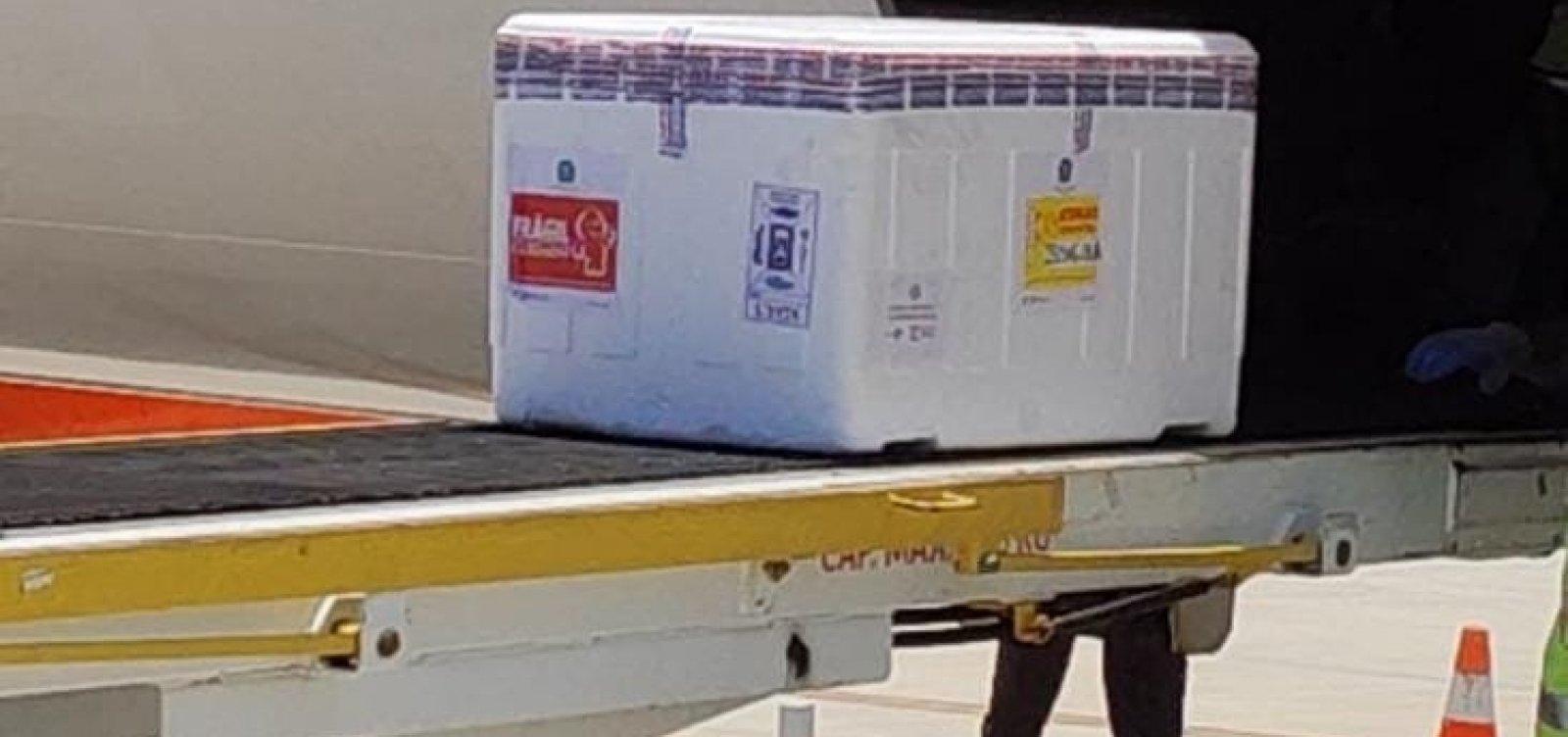 Lote de Oxford chega na Bahia e estado supera marca de 8 milhões de vacinas recebidas