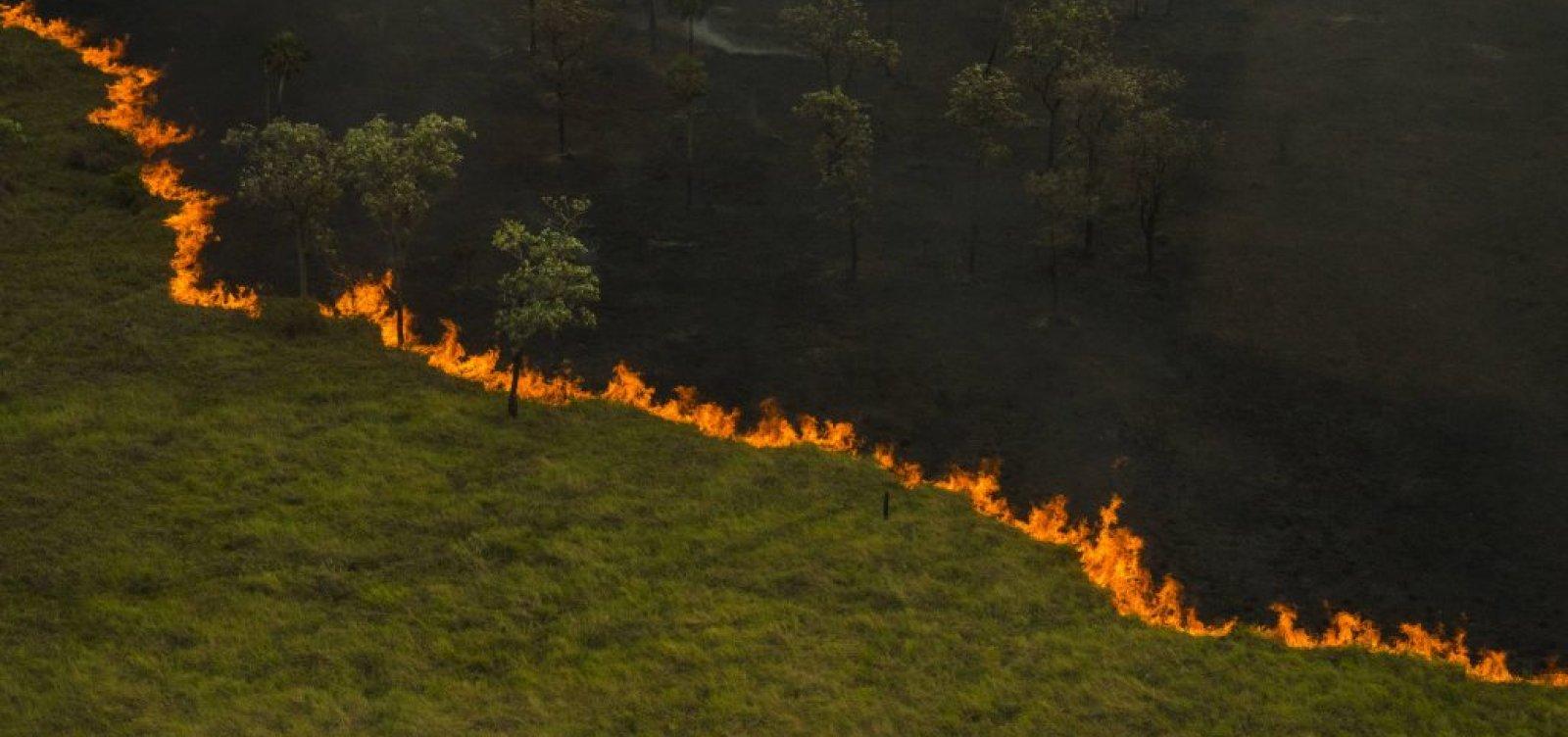 Área devastada do Pantanal neste ano já se aproxima do recorde de 2020