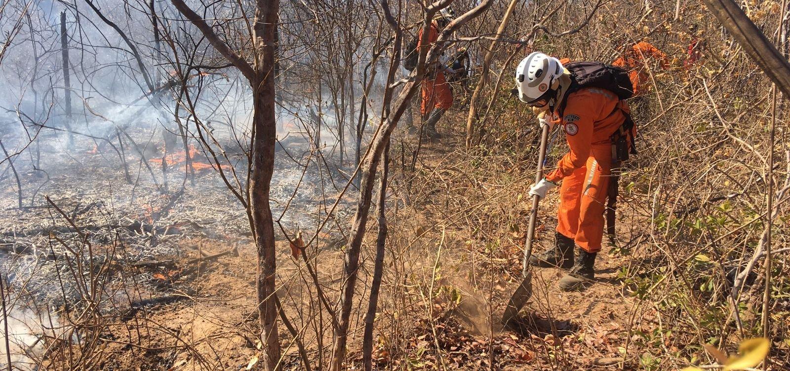 Em temporada de incêndios, novo foco surge no nordeste da Bahia