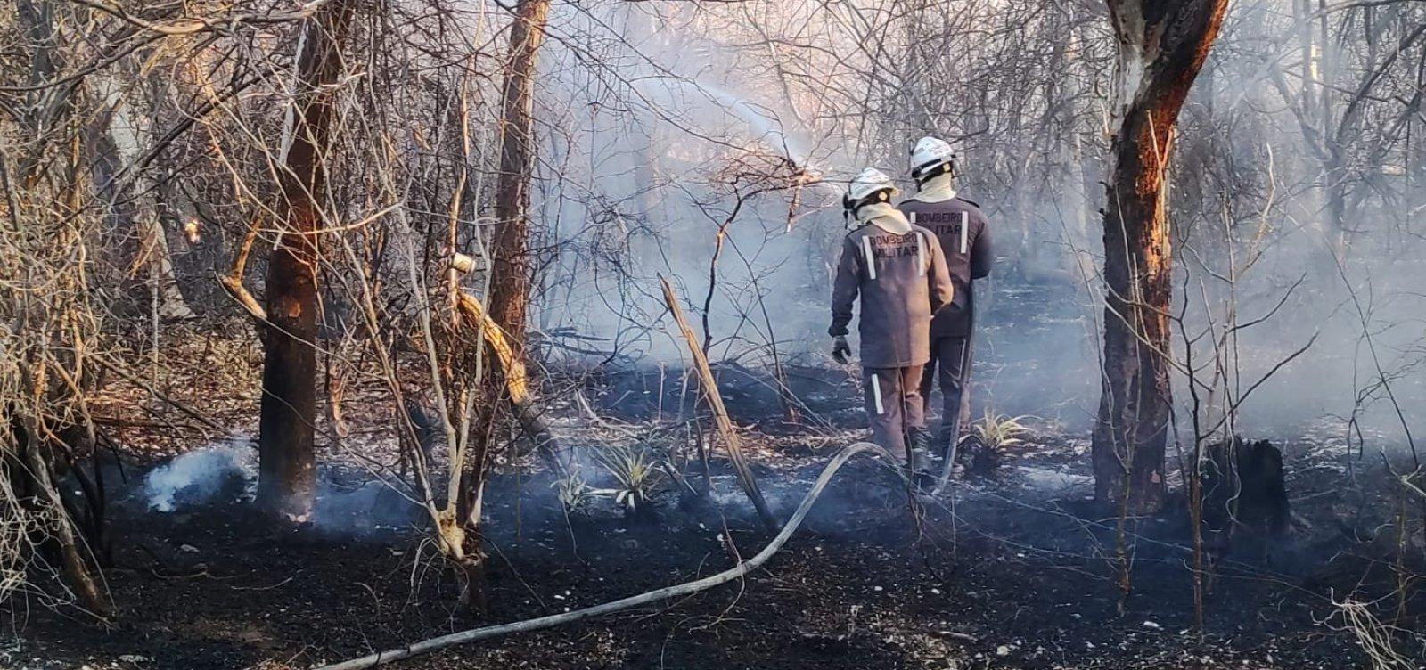 Incêndio atinge área na zona rural em Guanambi