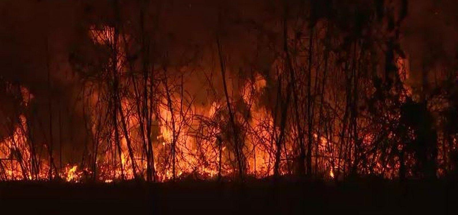 Bahia tem sete focos de incêndios ativos em vegetação e três controlados