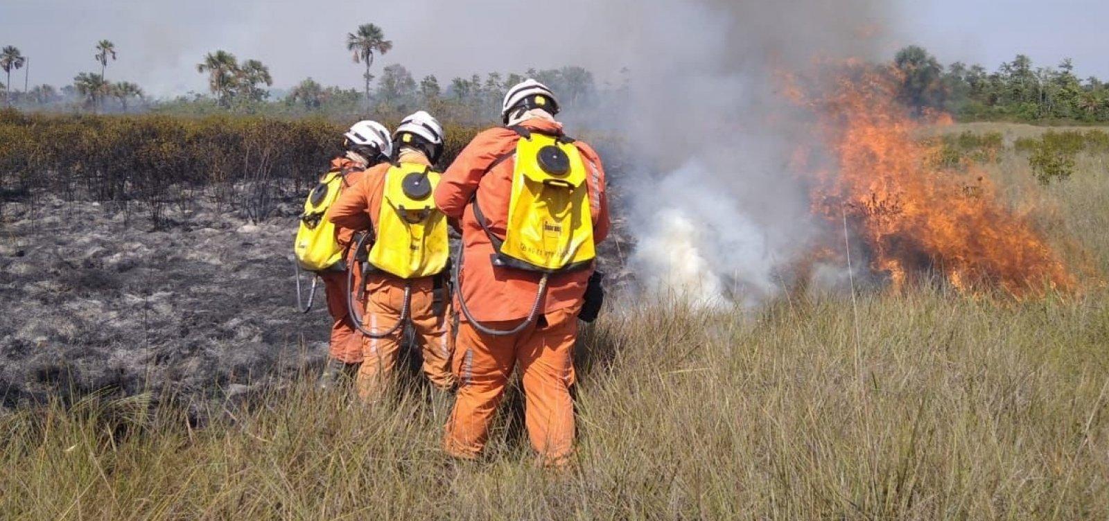 Bombeiros atuam em 10 municípios para combater os incêndios florestais na Bahia