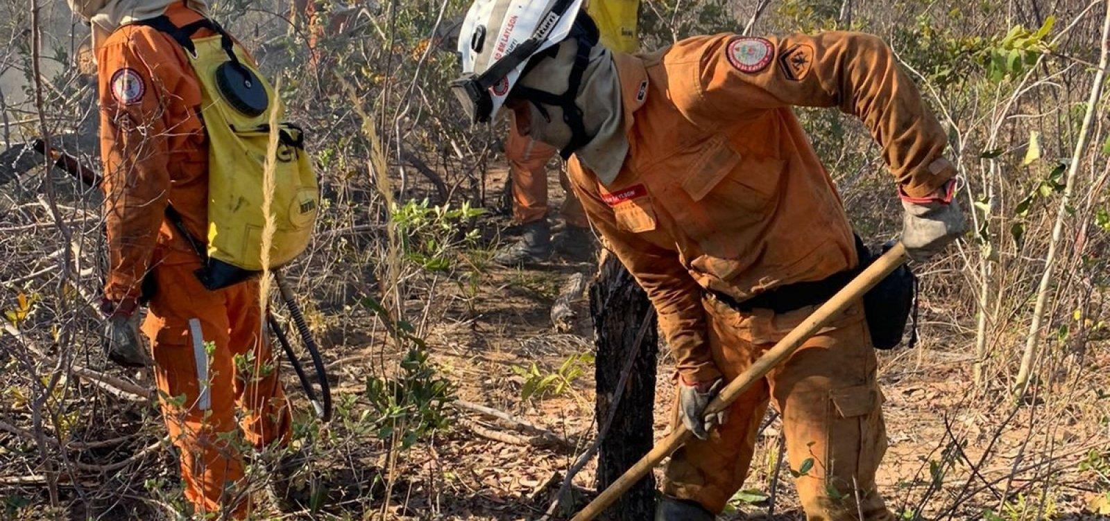 Operação Florestal do Corpo de Bombeiros atua em 12 focos de incêndio na Bahia