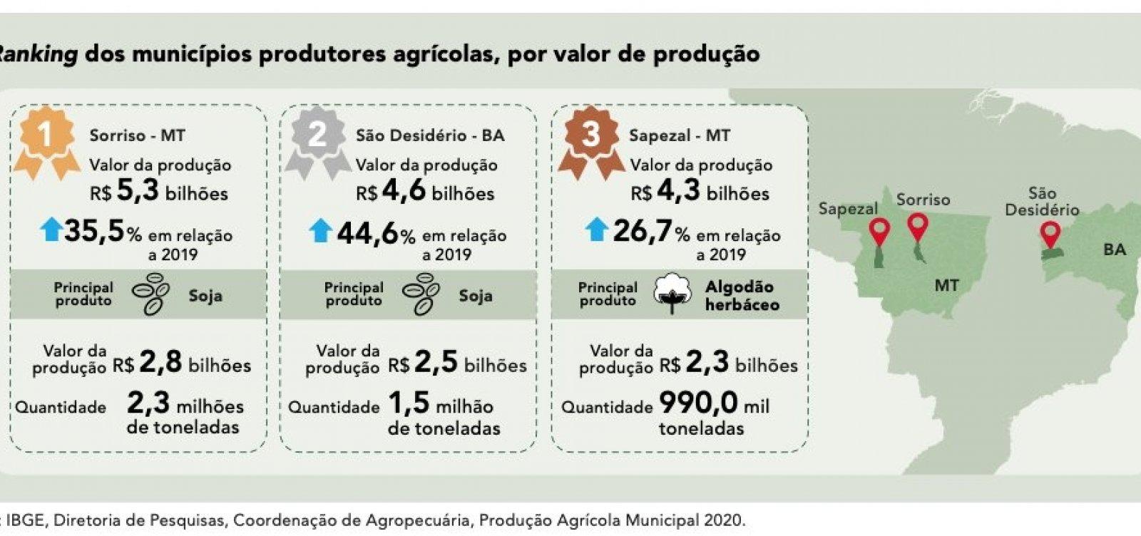 Município baiano tem o 2º maior valor gerado com produção agrícola no país