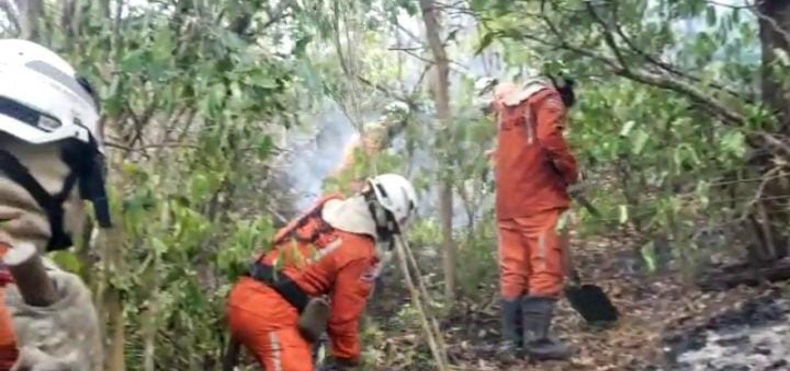 Incêndio na região de Lençóis é controlado após cinco dias de combate