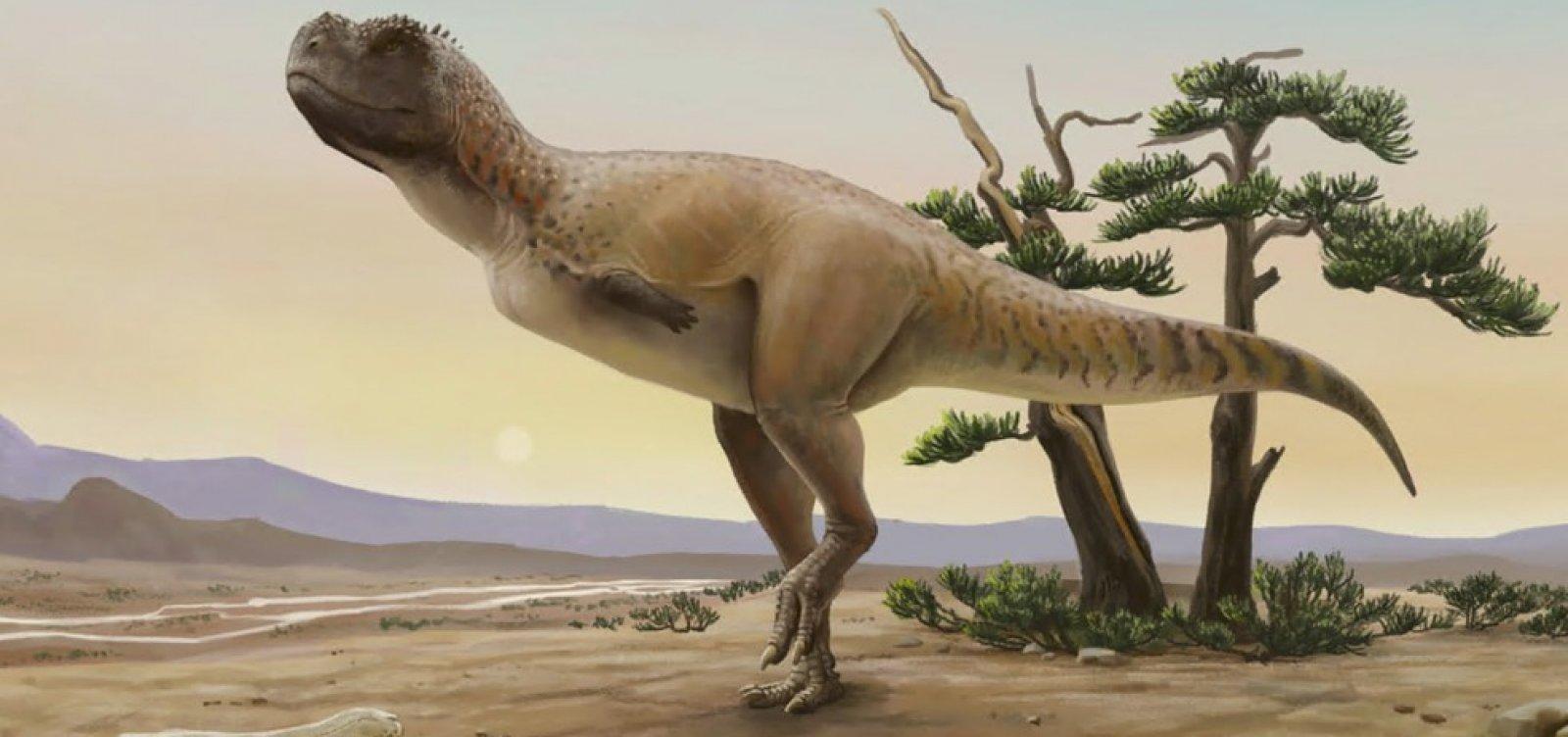 Pesquisadores descobrem nova espécie de dinossauro em São Paulo