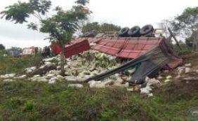 Carreta tomba na BA-650 e deixa quatro pessoas feridas nesta terça-feira