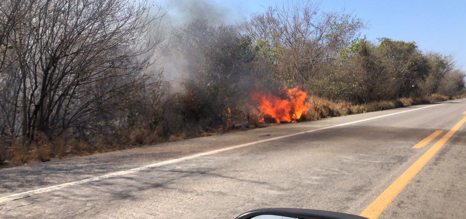 Três incêndios florestais são extintos e bombeiros seguem combates na Bahia