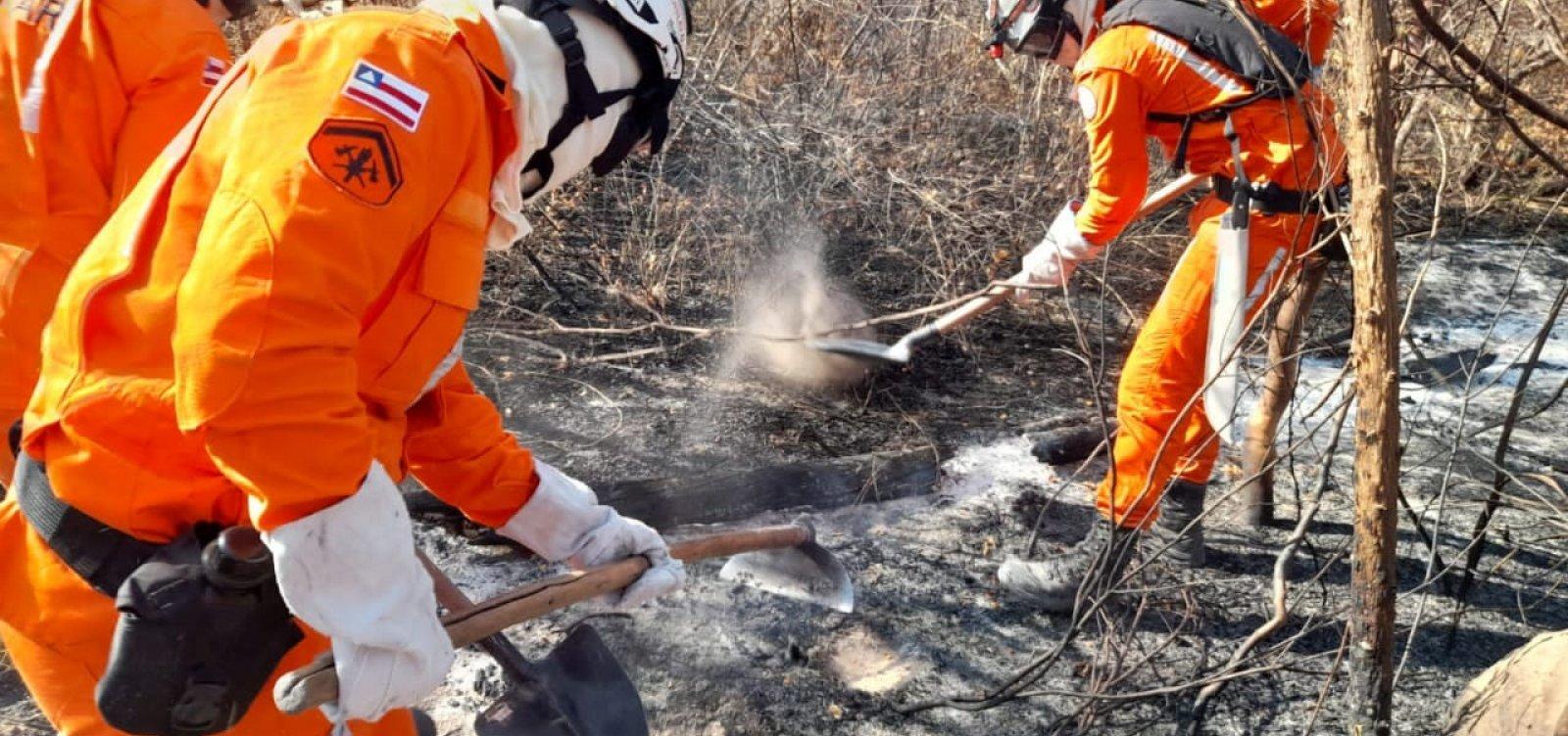 Mais duas aeronaves são enviadas para combate a incêndio em Miguel Calmon