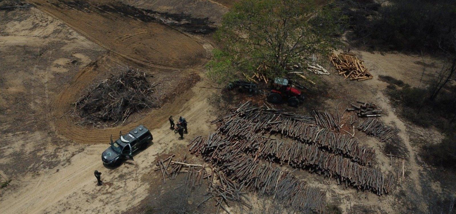 Inema detecta desmatamento em área equivalente a 590 campos de futebol no interior da Bahia