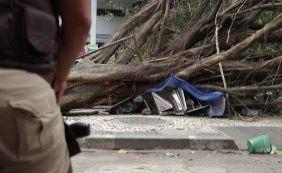 Mulher morre após árvore cair nas proximidades da Avenida Tancredo Neves