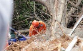 Após acidente, Seman passa a podar árvores na Tancredo Neves