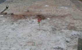 Morador faz homenagem a idosa morta e coloca flor na Tancredo Neves