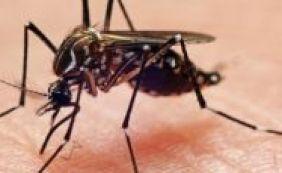 Governo americano confirma três novos casos de Zika no Texas