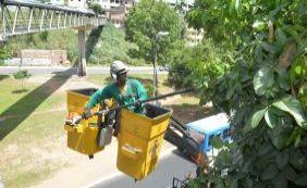 Cerca de cinco mil árvores recebem limpeza preventiva no Carnaval