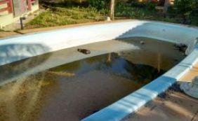 Com água parada, piscina de pousada abandonada preocupa moradores em Itacimirim