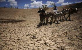 Seca: mais oito cidades baianas estão em situação de emergência