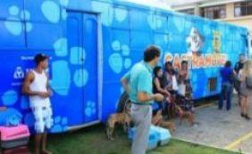 Clínica veterinária realiza castração animal gratuita em Amaralina