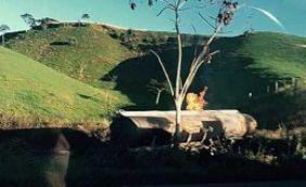 Carro colide com caminhão-tanque em Santo Antônio de Jesus