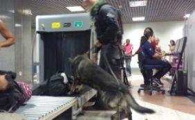 Força-tarefa impede entrada de armas e drogas pelo aeroporto de Salvador