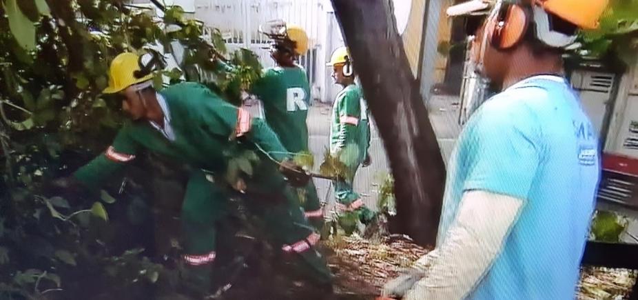 Árvore cai no bairro do Stiep e complica trânsito