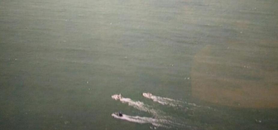Catamarã é danificado em colisão com baleia na Baía de Todos-os-Santos