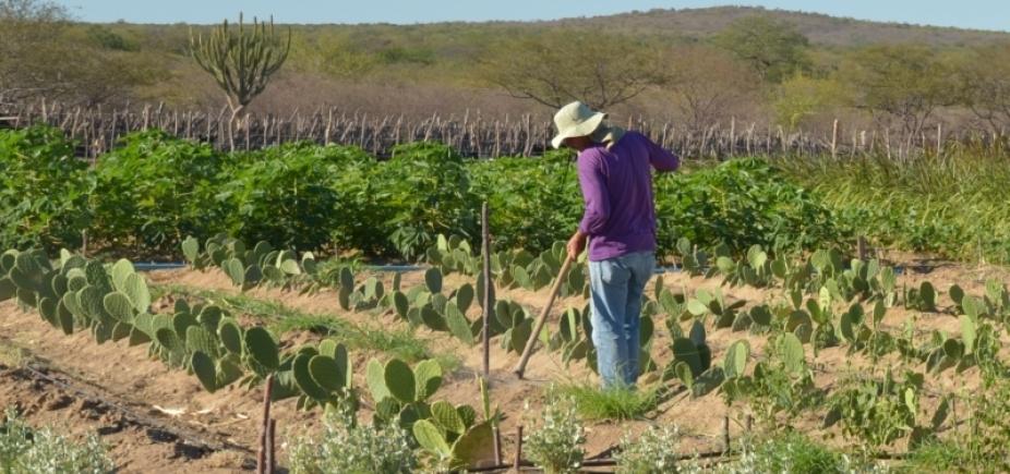 Proprietário rural tem até esta sexta para entregardeclaração de propriedade