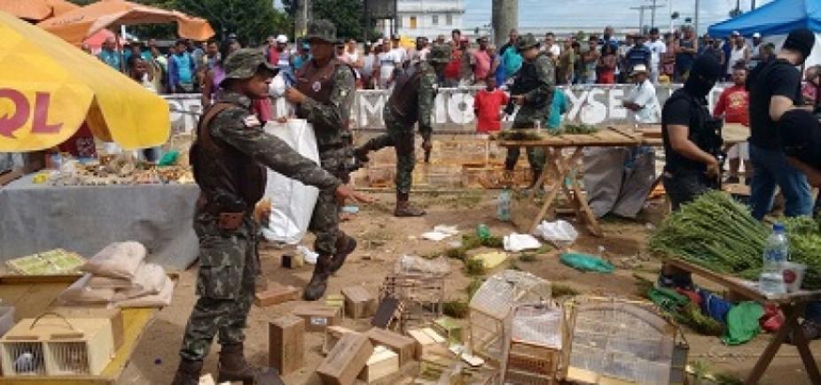 Operação da Polícia Militar prende 10 homens por comércio ilegal de aves