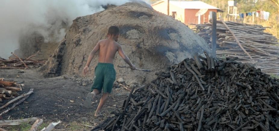 Trabalho infantil: 118 crianças são resgatadas de coleta de dejetos, aterro sanitário e carvoarias