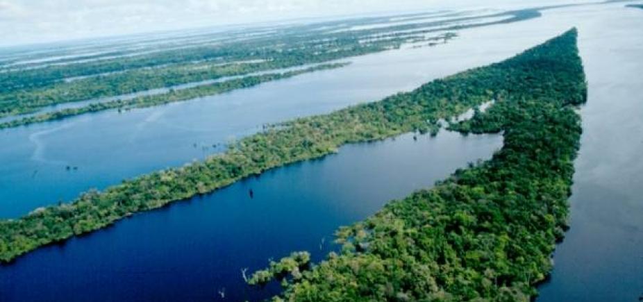 Avião do Greenpeace cai no Amazonas e deixa um morto e quatro feridos