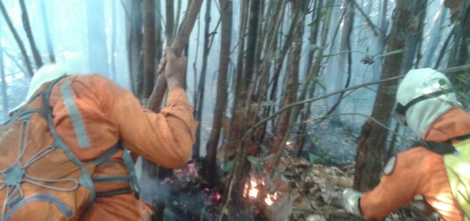 Área de preservação ambiental no oeste da Bahia é atingida por incêndio