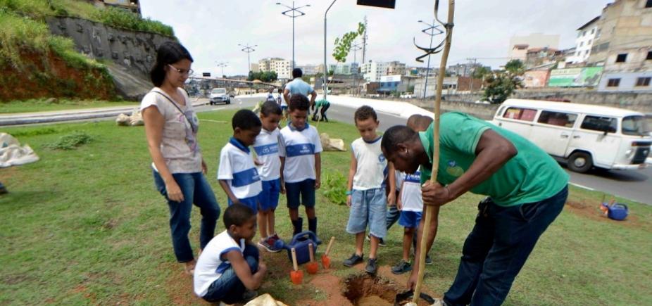 Prefeitura começa a minimizar impactos ambientais do BRT com replantio de árvores