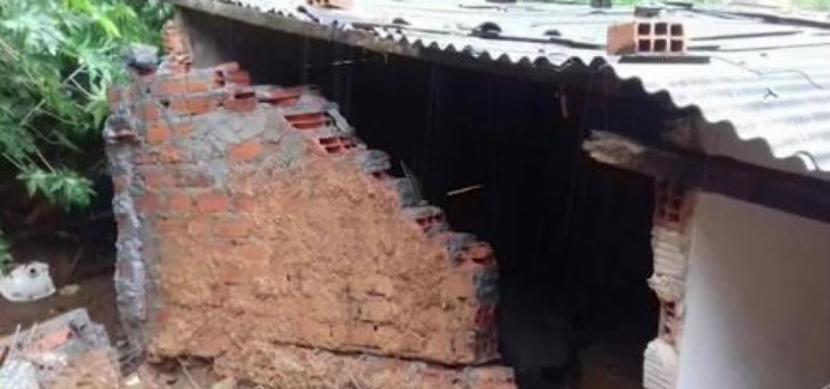 Cachorro morre após muro desabar no Bairro da Paz