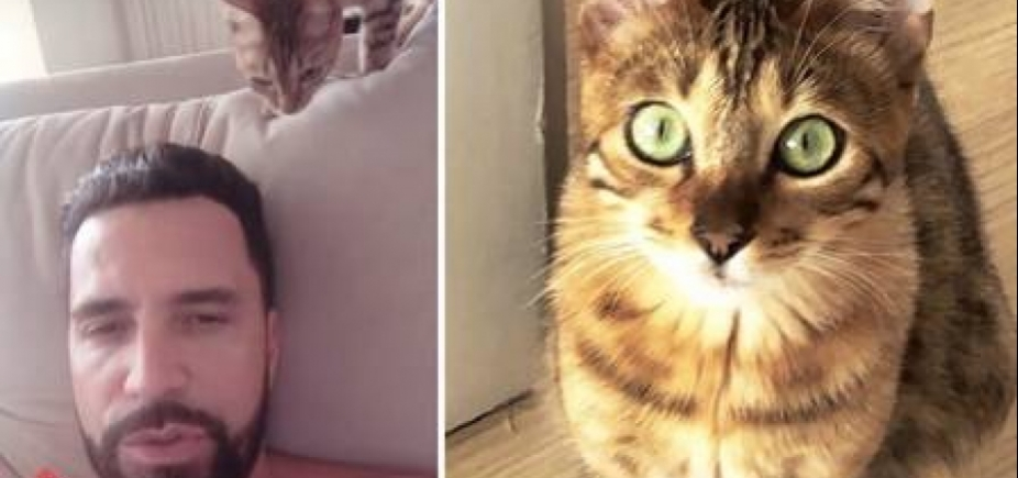 Latino substitui macaco Twelves, morto há um mês, pelo gatinho Valentino