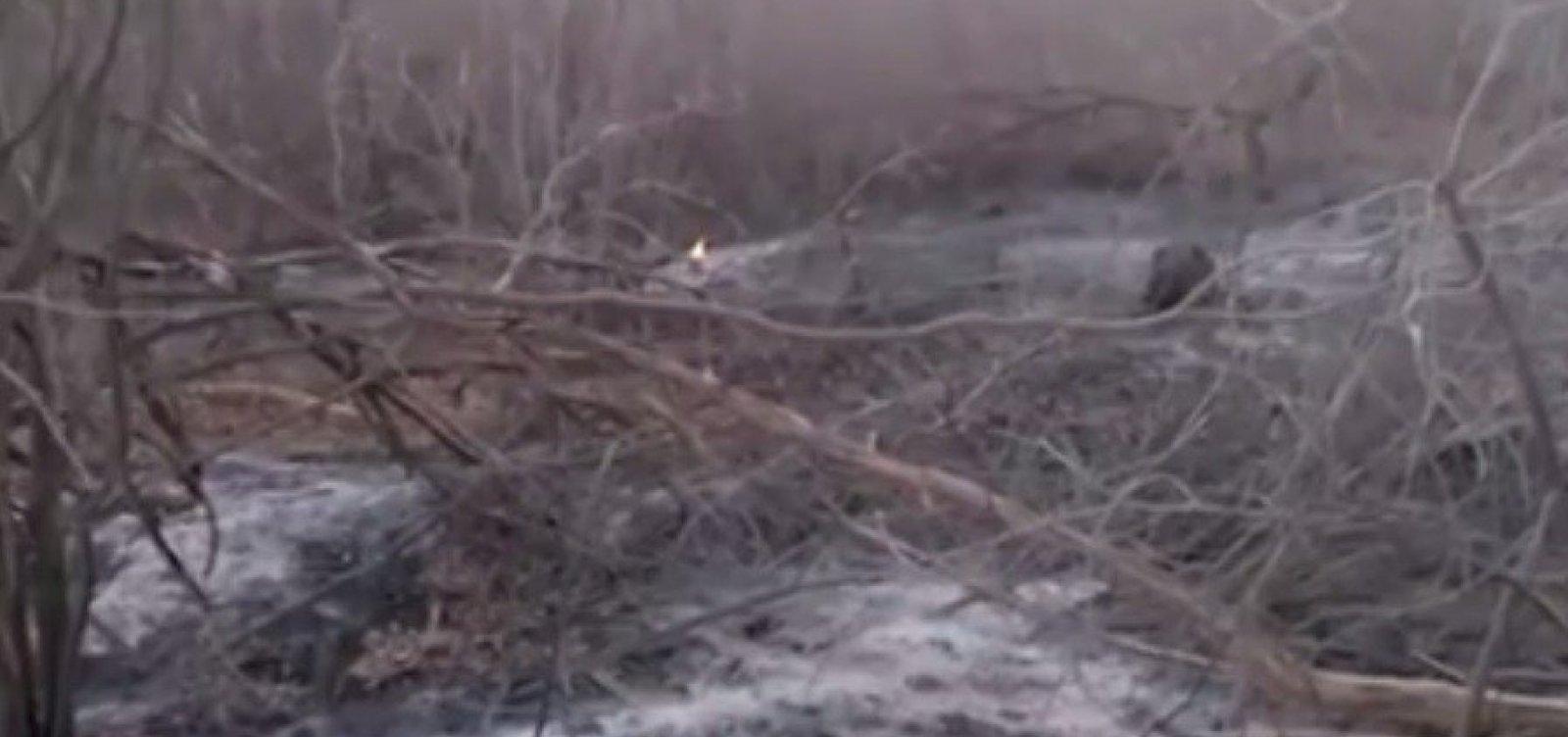 Área de caatinga no norte da Bahia é atingida por incêndio há mais de 20 dias