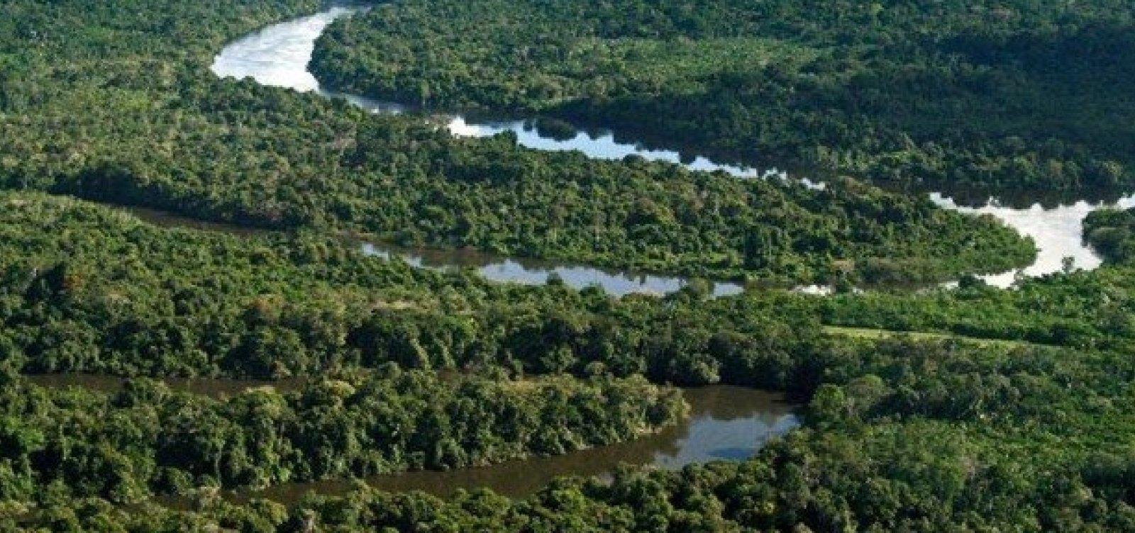 Temperatura na Amazônia pode aumentar em 1,45°C devido a desmatamento
