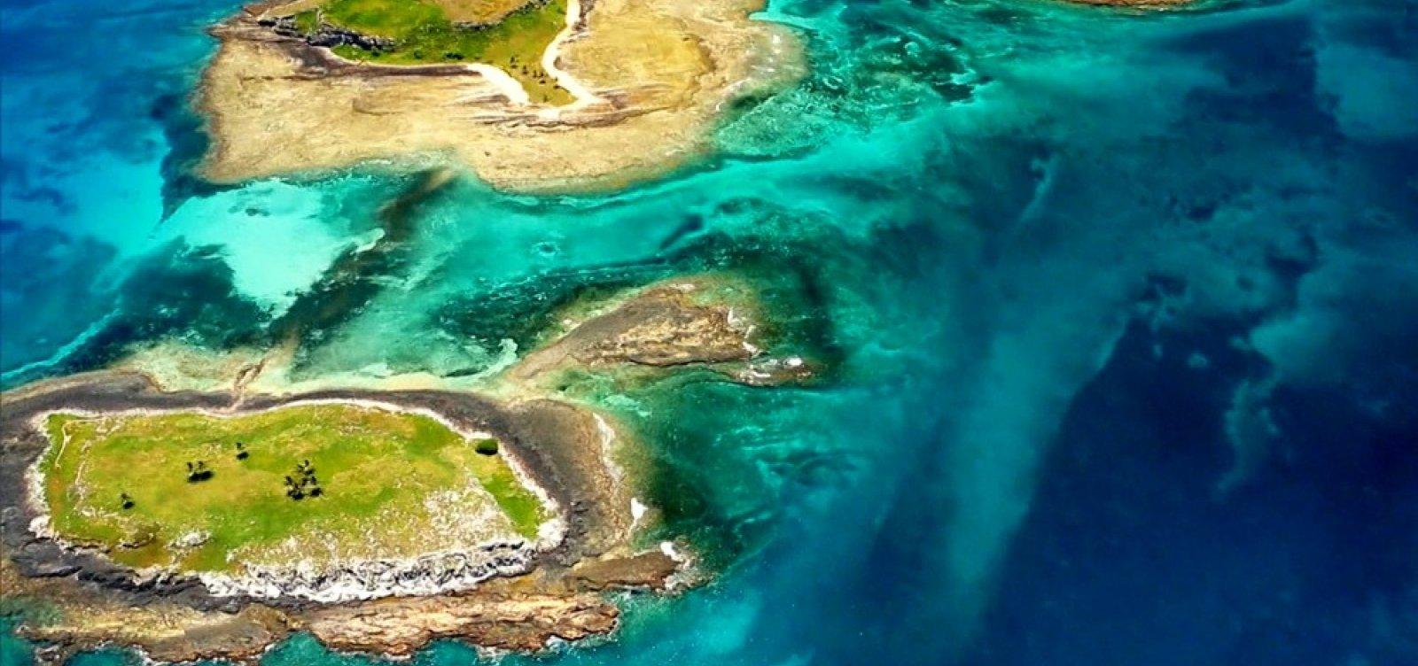 Entidades ambientais protestam contra exploração de blocos de petróleo em Abrolhos