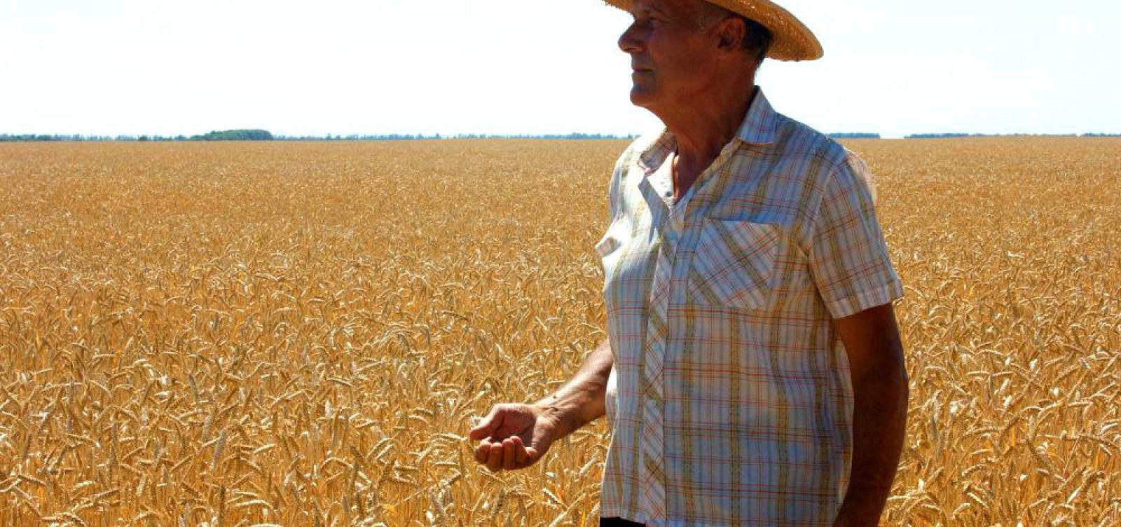 Ipea: número de aposentadorias rurais é maior que população declarada