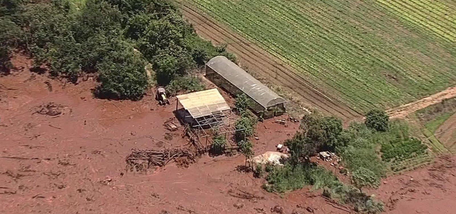 Número de mortos em desastre de Brumadinho sobe para 225, diz Defesa Civil de MG