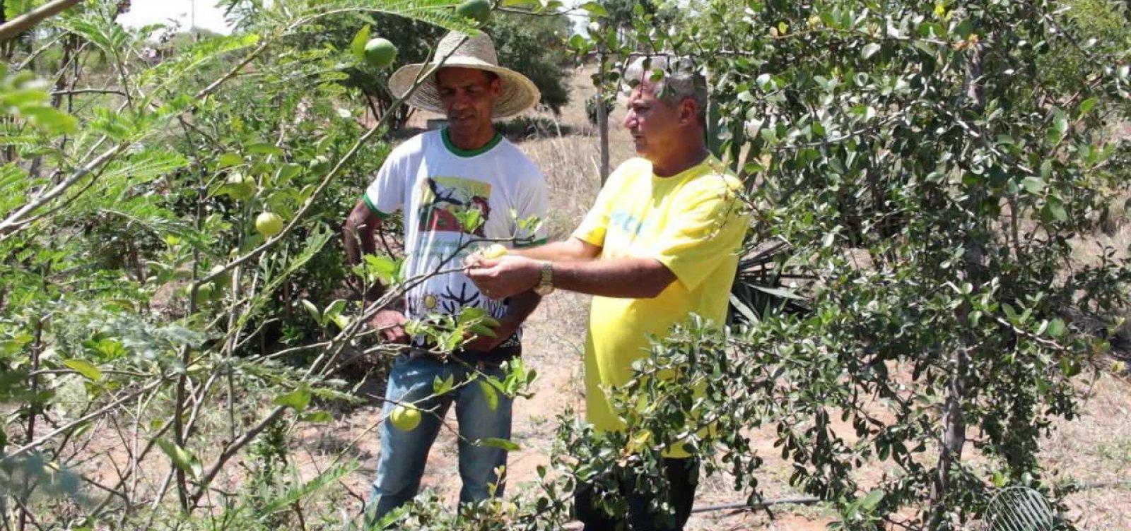 Produtores rurais passam a emitir Nota Fiscal Eletrônica com o CPF na Bahia