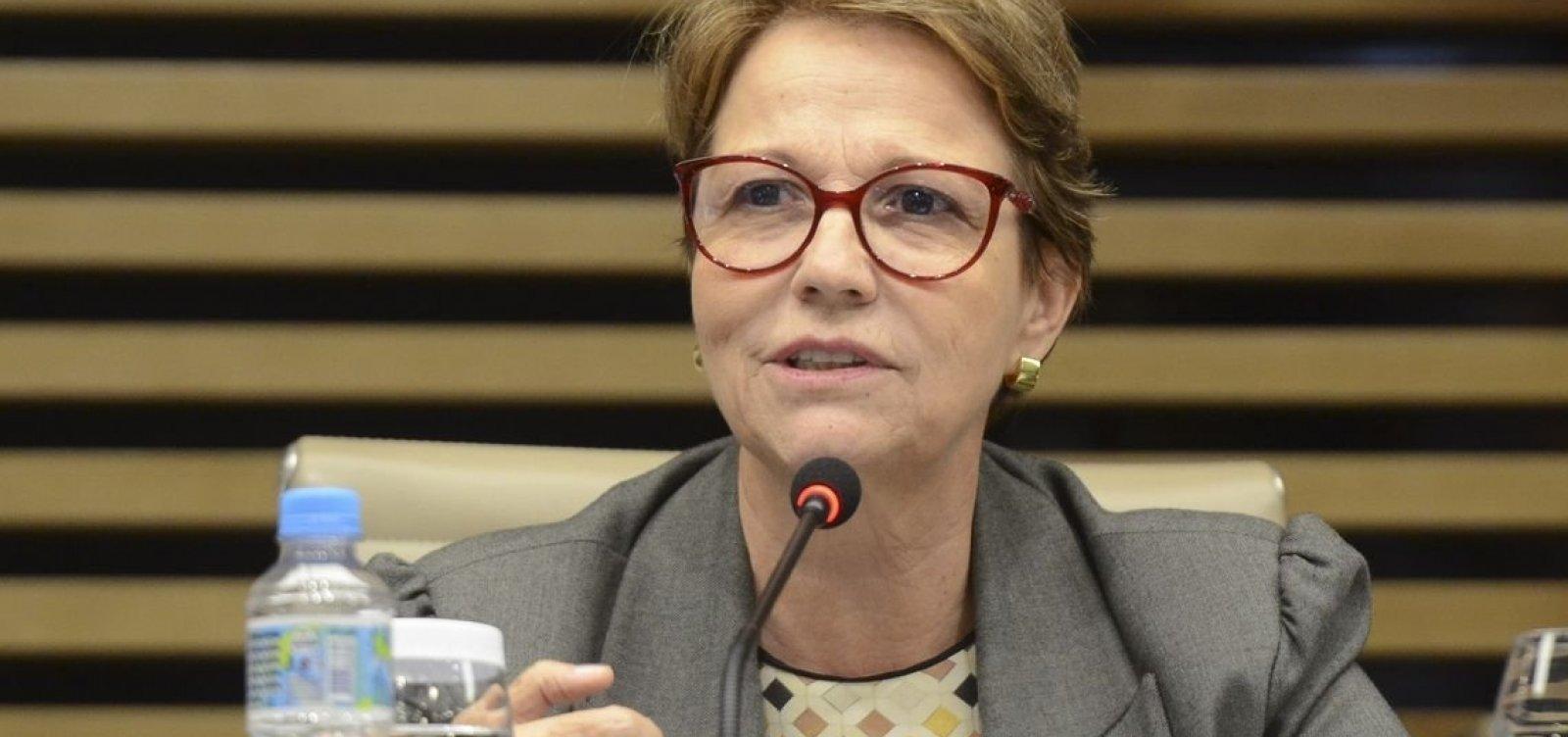 Ministra da Agricultura busca novos negócios na Ásia