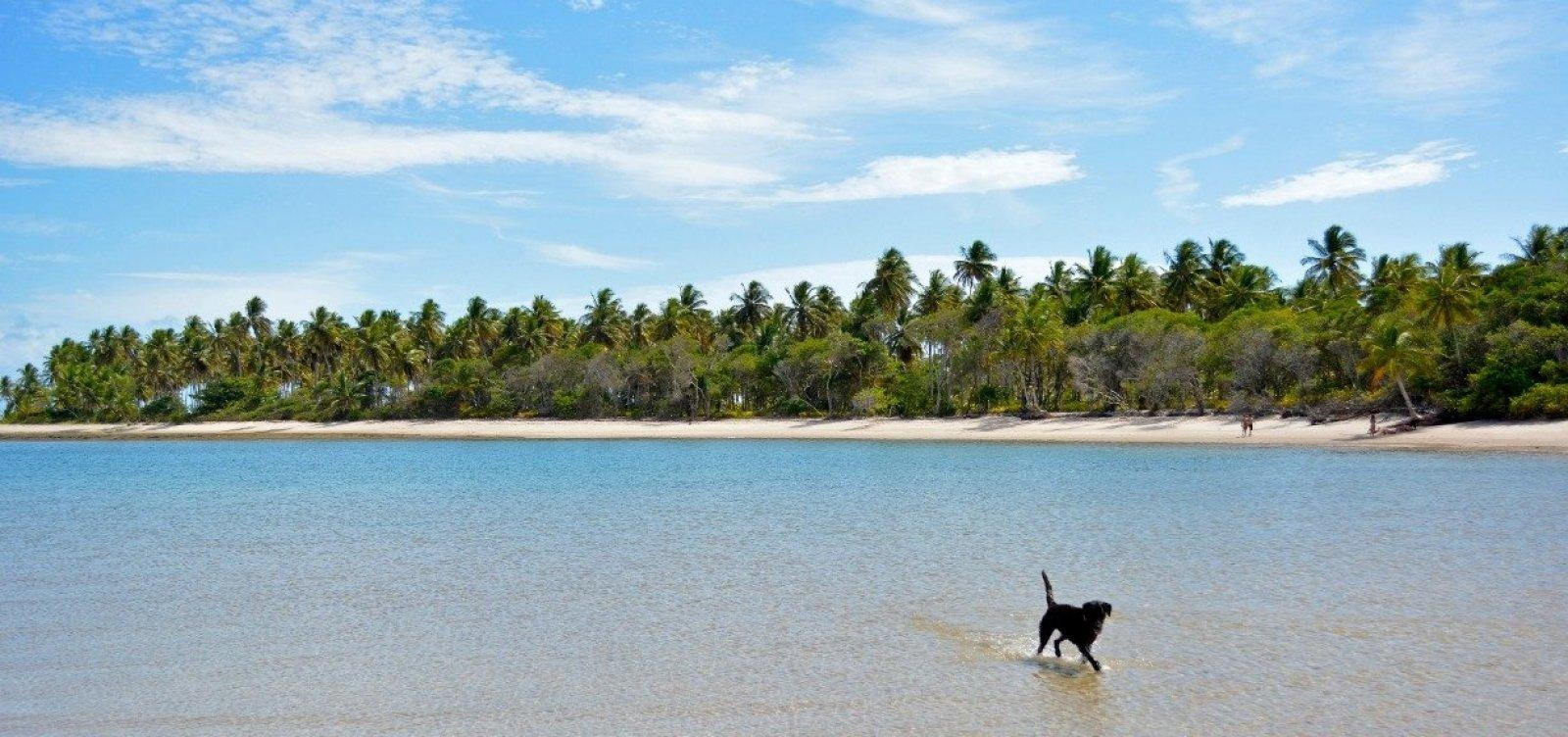 MPF recomenda suspensão de construção de resort em Boipeba, na Bahia