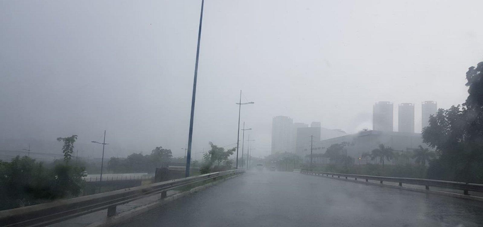 Chuva causa alagamentos e derruba árvore em Salvador; Codesal registra 12 solicitações