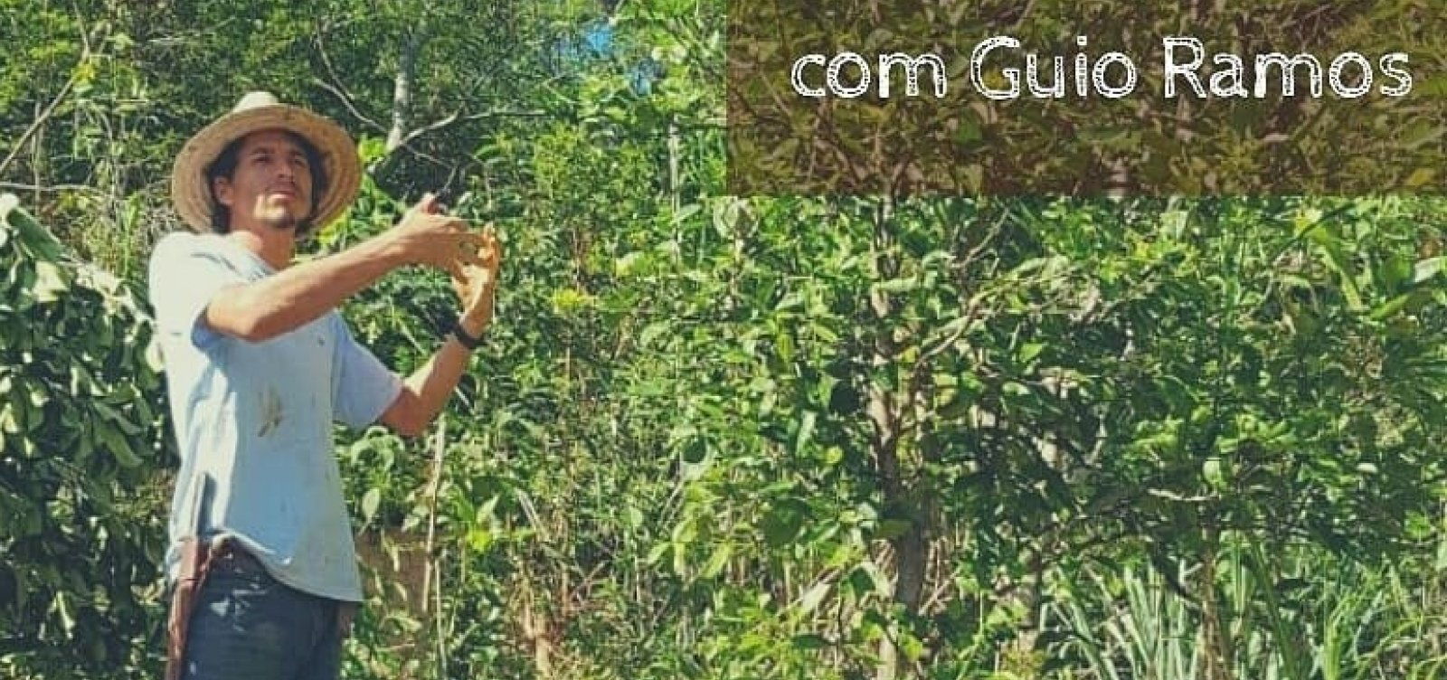 Curso de Agrofloresta Sintrópica com Guio Ramos abre inscrições na Bahia