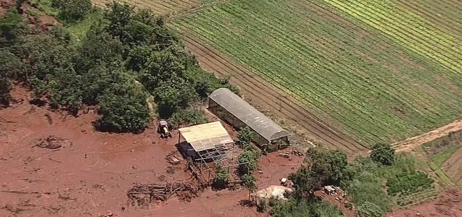 Quatro meses após tragédia de Brumadinho, investigados estão soltos e apurações continuam