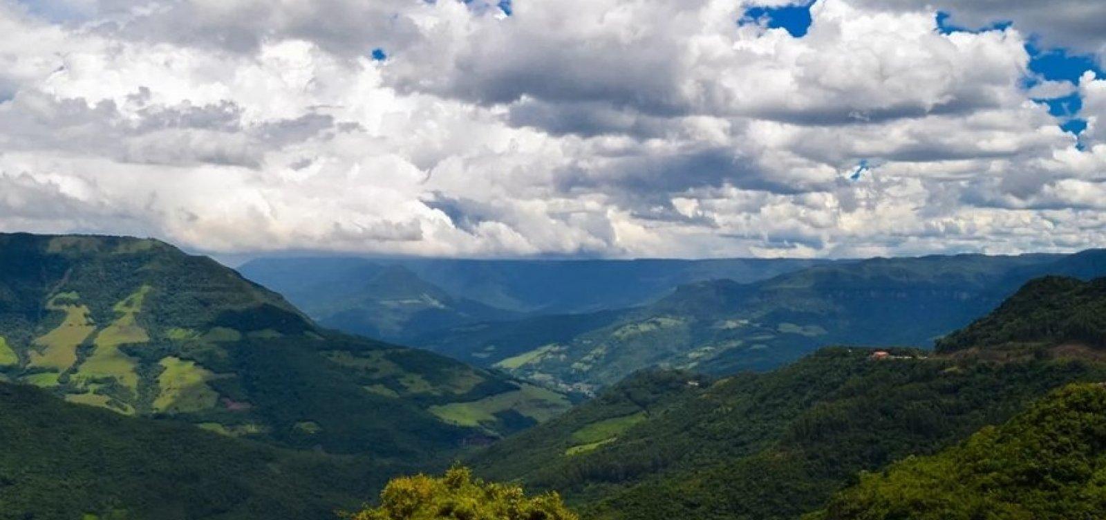 Devastação da Mata Atlântica cresce na Bahia e em quatro estados do país, aponta levantamento
